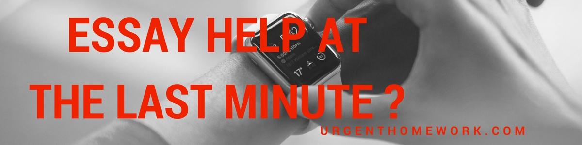 urgent essay writing help