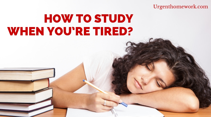 When Homework Is Useless >> How To Study When You Re Tired Urgent Homework Blog