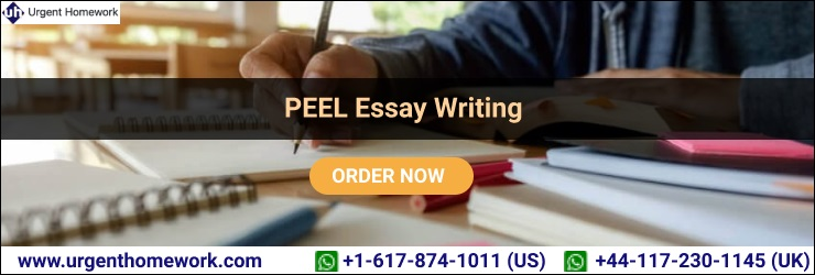What is PEEL paragraph