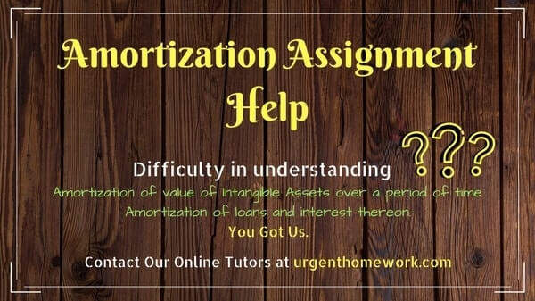 Amortization Assignment Help