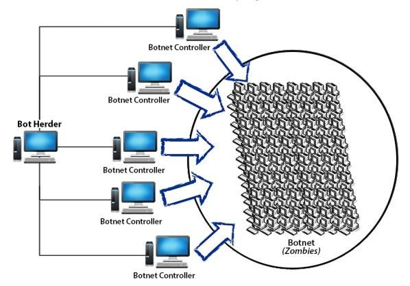 Architecture of a Botnet