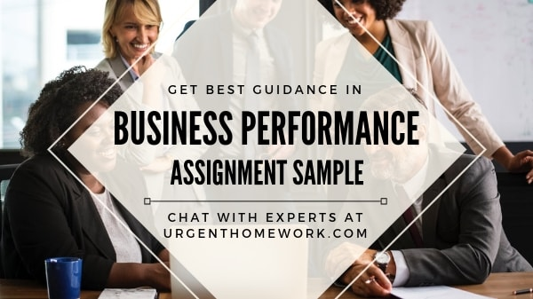 Business Performance Assignment Help