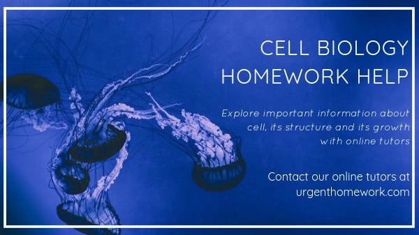 High school biology homework help
