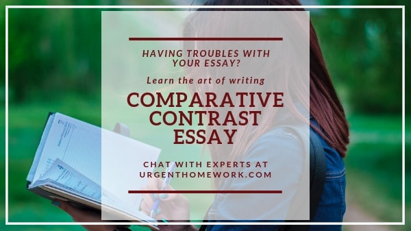 Comparative Contrast Essay Help