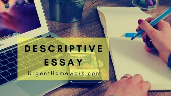 what is the meaning of descriptive essay