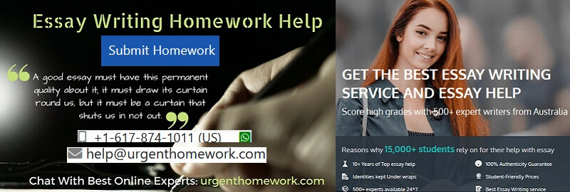 Writing homework help