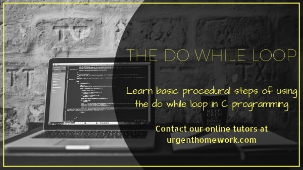 homework help with do while loop