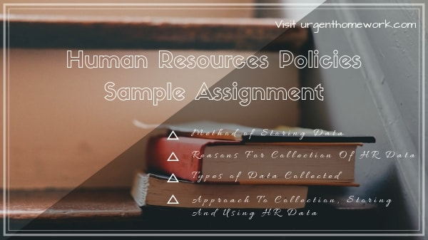 Human Resources Policies Sample Assignment
