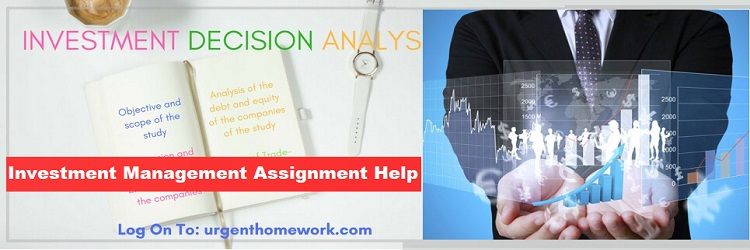 Investment decision analysis
