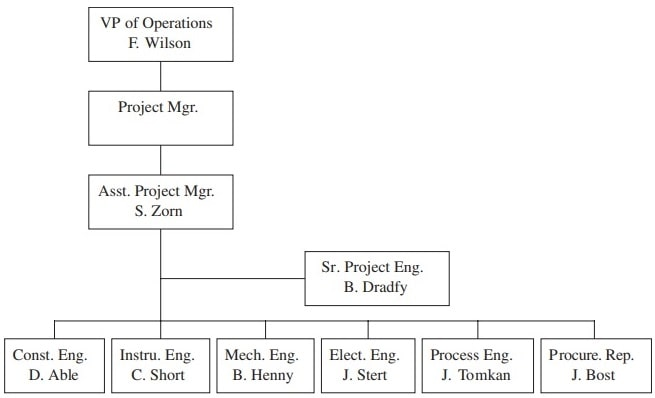 Lyle project team organizational chart