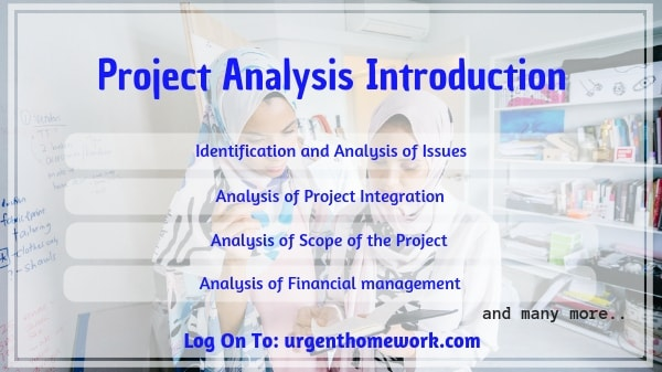 Project Analysis Introduction