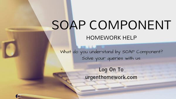 SOAP Component Assignment Help