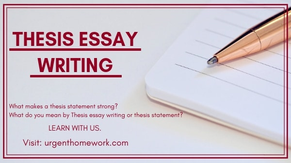 Thesis Essay Writing